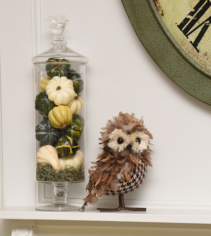 Fall Gourds - Feathers - Owl - Details Full Service Interiors - Monson Interior Decorating