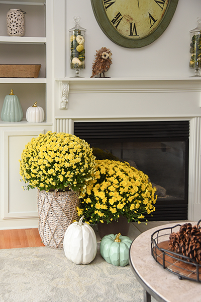 Decorating for Fall That Lasts Until Thanksgiving - Details Full Service - Western MA Interior Design