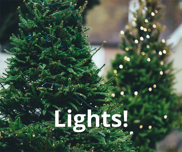 Lights are the most important part of the christmas tree - Details Full Service Interiors - Interior Designer in Monson